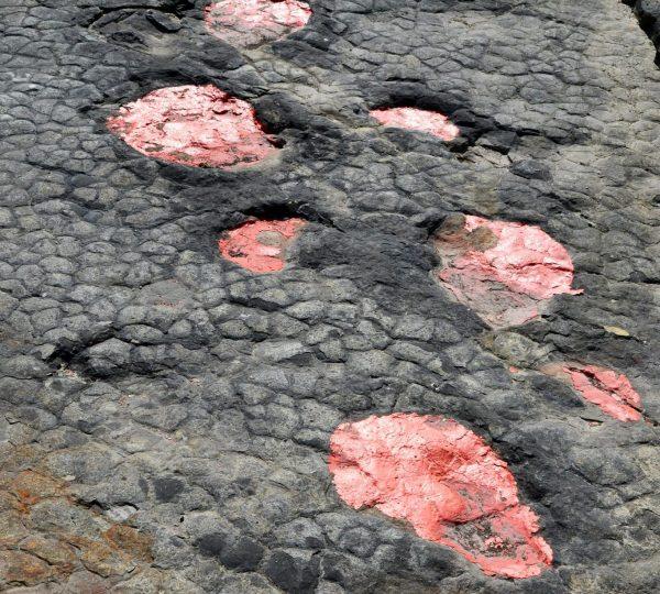 Traces de dinosaures de Loulle, © Jura Tourisme