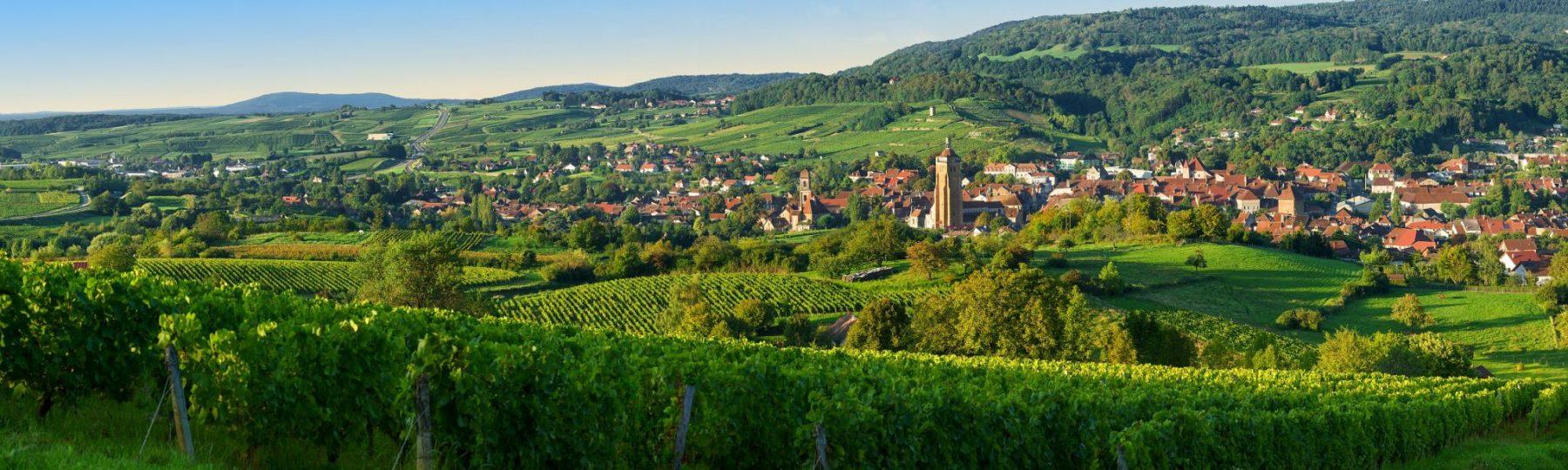 Vigne et village d'Arbois, © Stéphane Godin/Jura Tourisme