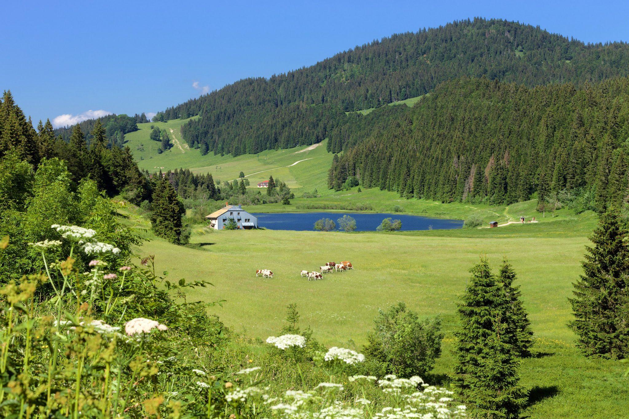 Etape Les Rousses Lajoux Jura Tourisme