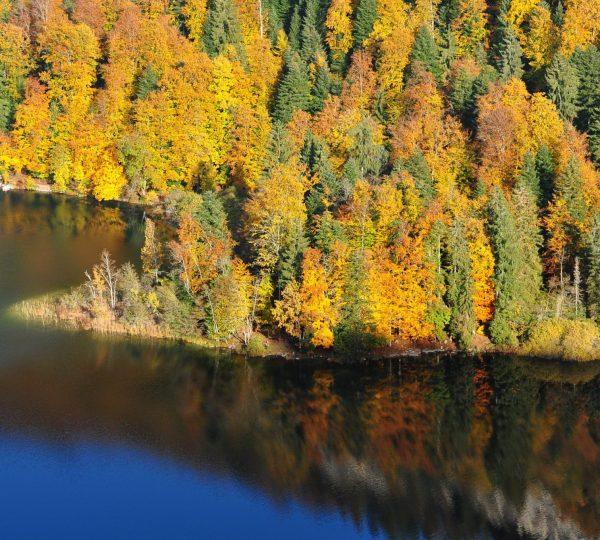 Belvédère des 4 lacs en automne © Jack Carrot/Jura Tourisme