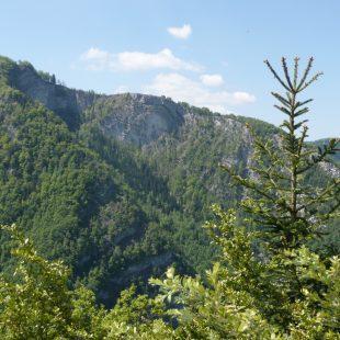 Trail des 7 Monts