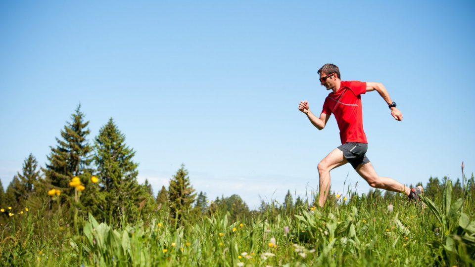 Trail dans les Hautes-Combes