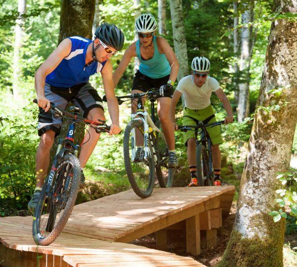 Guide VTT au Bike Park de Longchaumois