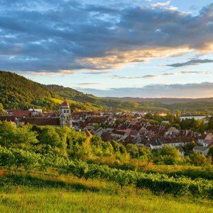 Poligny, Capitale du Comté