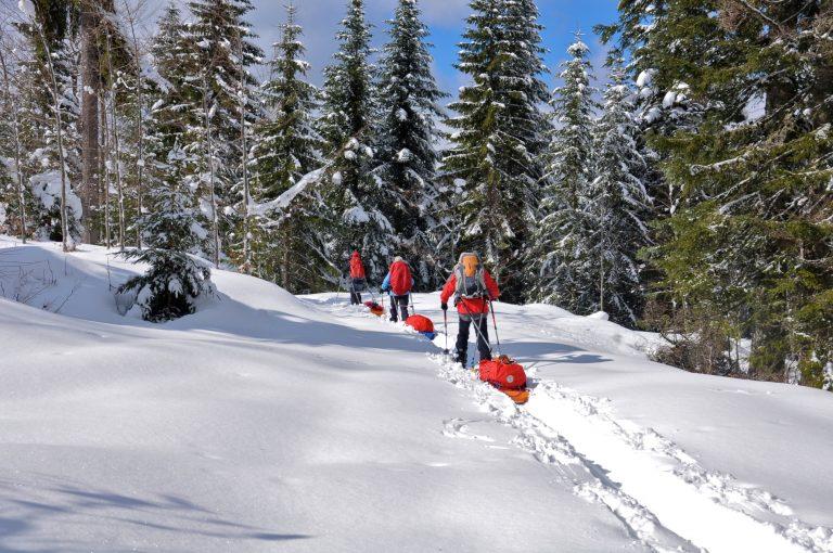 Groupe en ski de fond dans le massif du Mont Noir