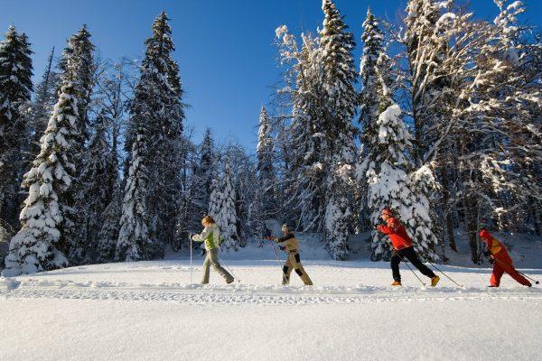 Famille en ski nordique