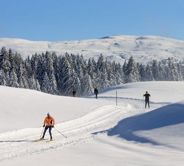Ski nordique et vue sur les Monts Jura © Stéphane Godin/Jura Tourisme