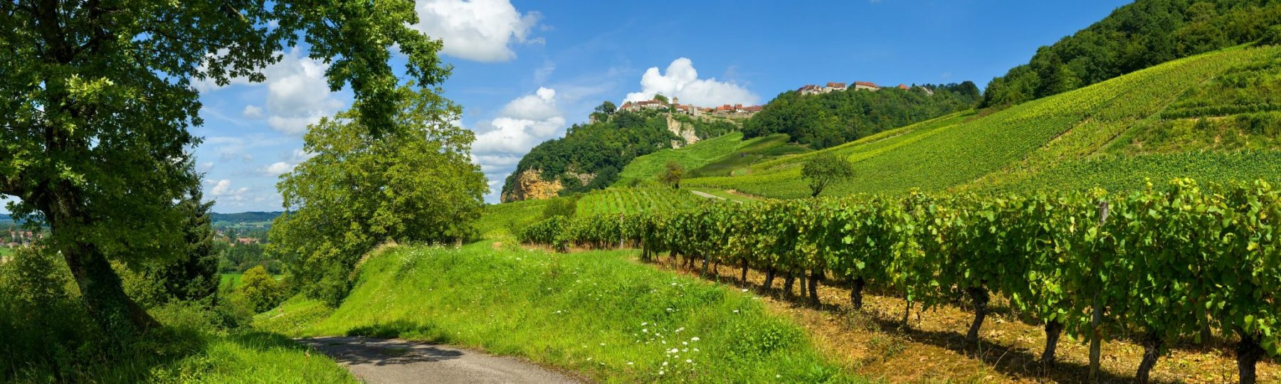 Vignoble de Château-Chalon © Stéphane Godin/Jura Tourisme