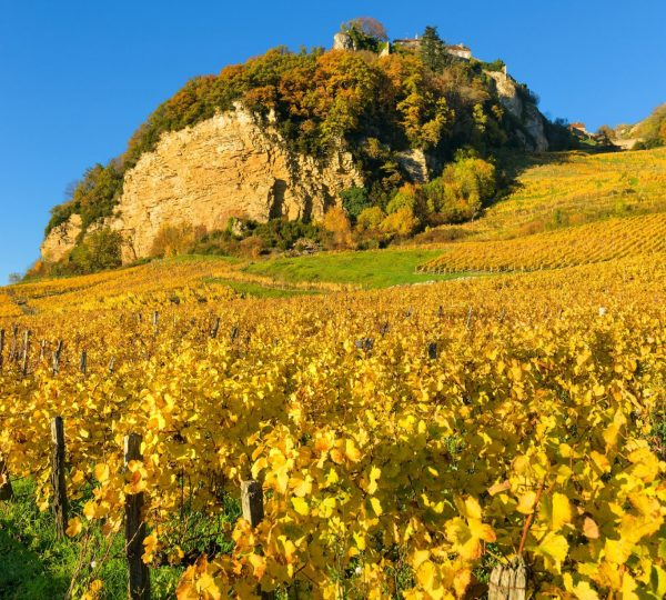 Vignes de Château-Chalon en automne © Stéphane Godin/Jura Tourisme
