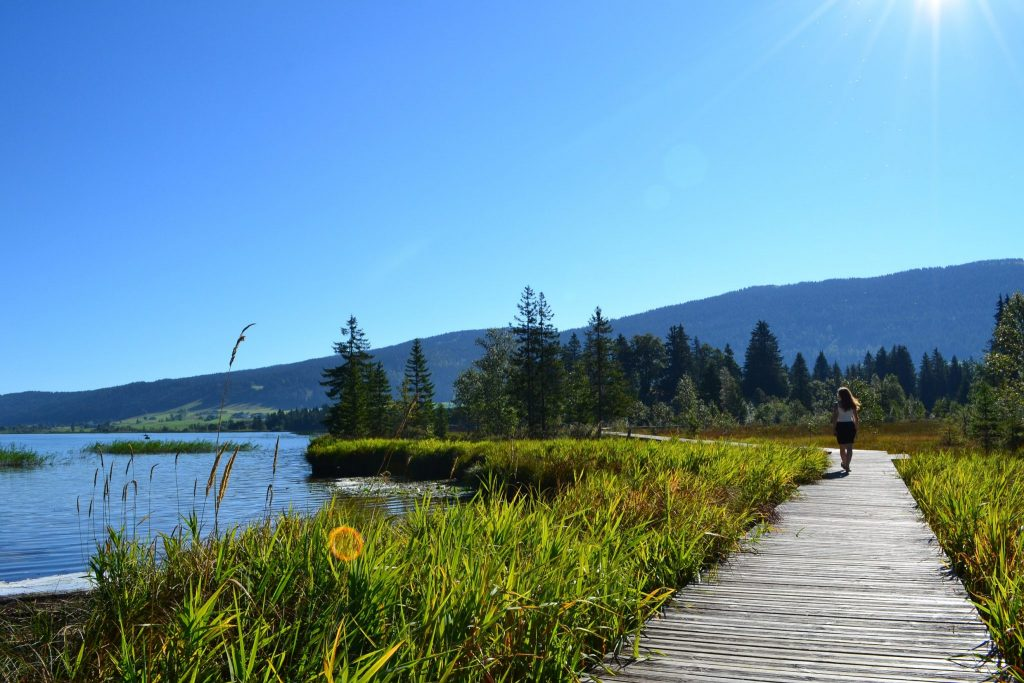 Lac et tourbière des Rousses © Jura Tourisme