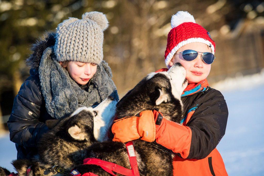 Enfants avec des chiens de traineaux