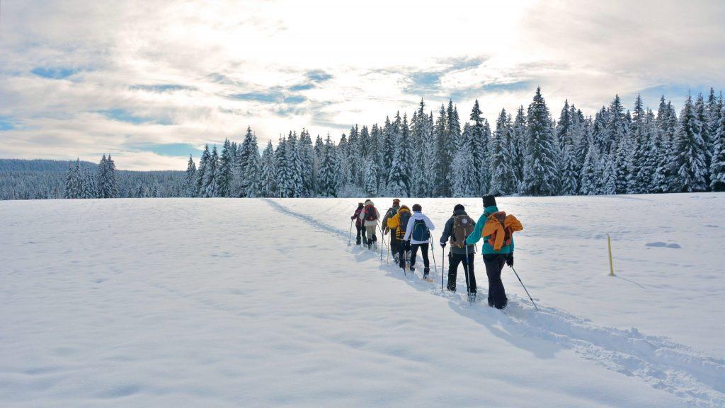 Groupe en raquette sur la Grande Traversée du Jura