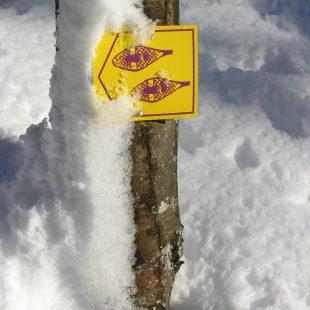 Balisage raquette à neige
