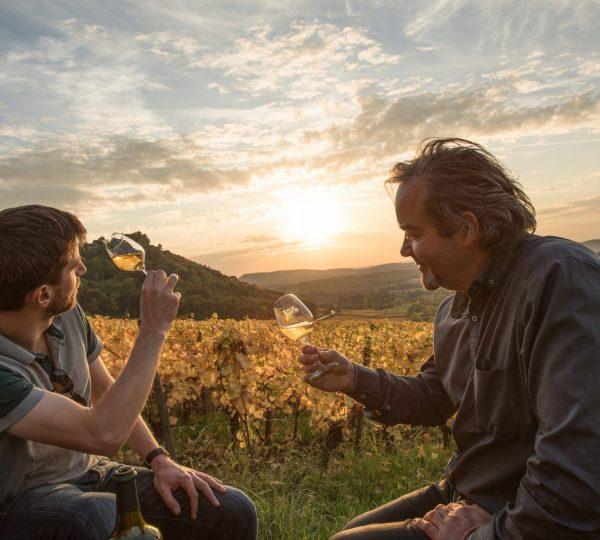 Dégustation de Vin Jaune dans les vignes © Nicolas Gascard/Jura Tourisme