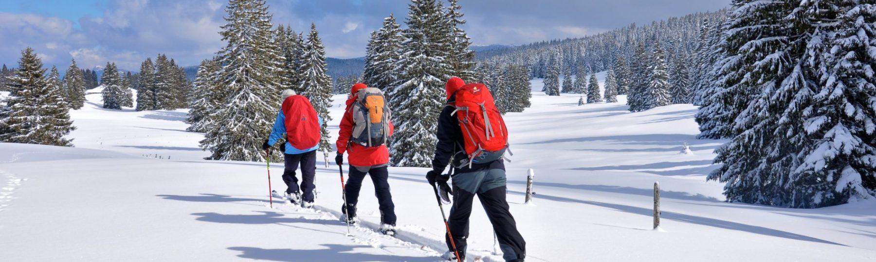 Groupe en ski de fond dans le Grandvaux © Jack Carrot/Jura Tourisme