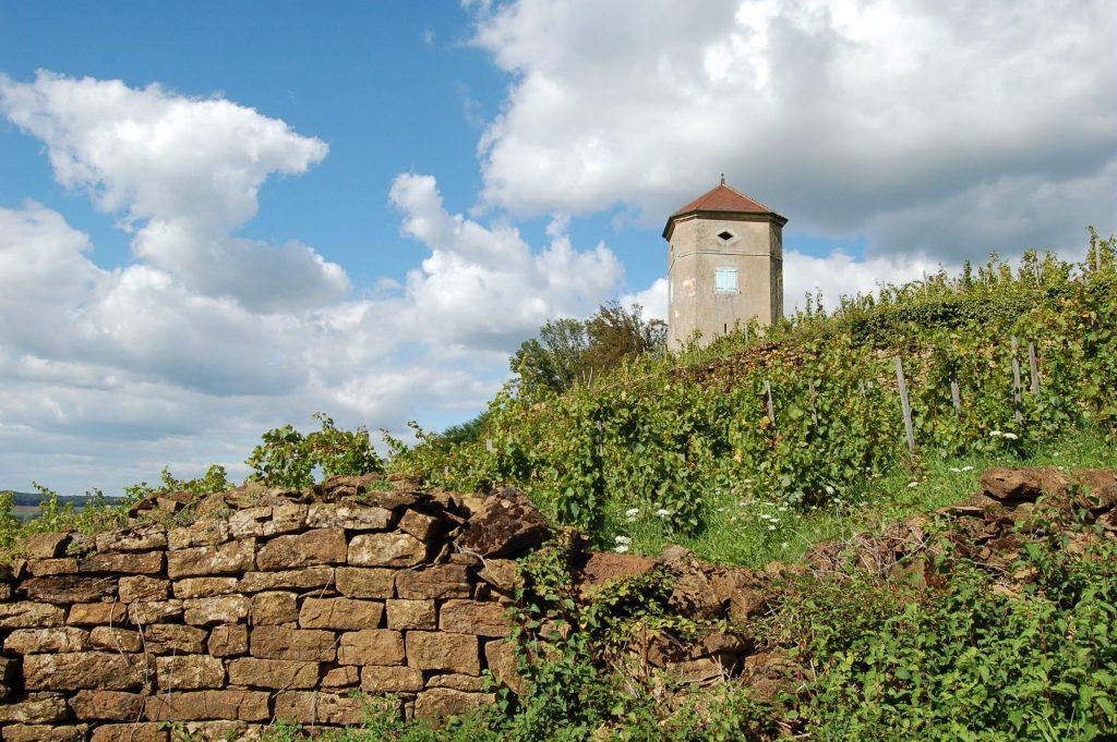 Tour de Curon (ou tour Canoz) à Arbois