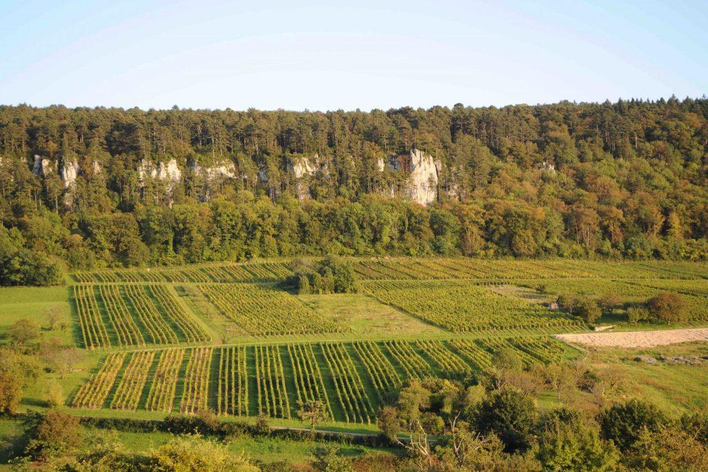 Coteau viticole de Chevraudes au pied des «pénitents» © Michel Campy