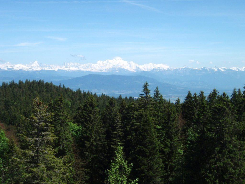 Forêt du Massacre © Jura Tourisme