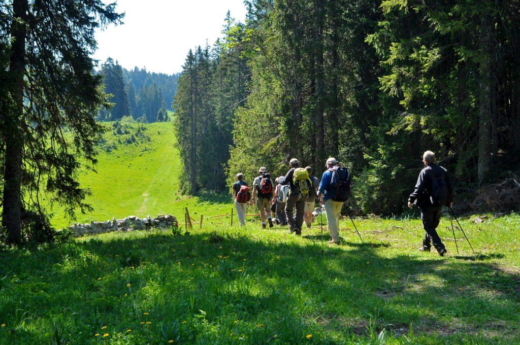 Randonnée dans le Haut-Jura © Jack Carrot/Jura Tourisme