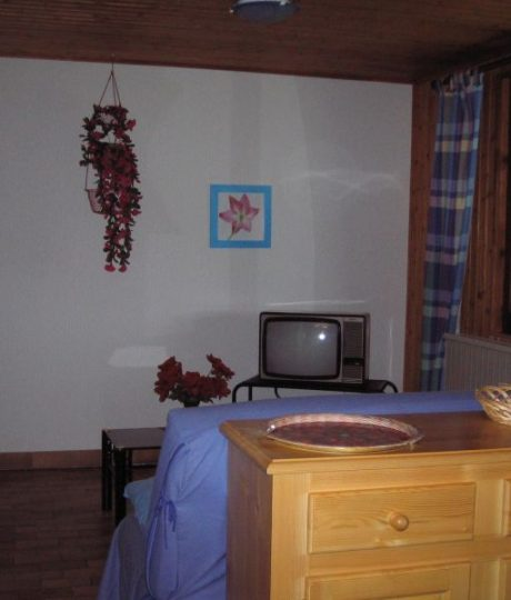 Appartement n°391065