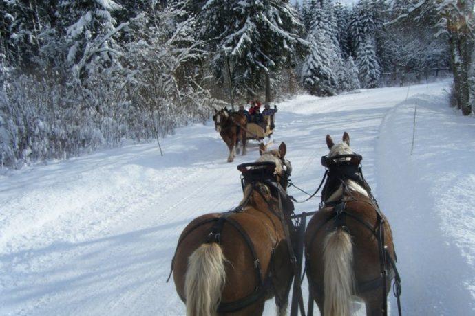 hiver-2013-032-1616446-1970496